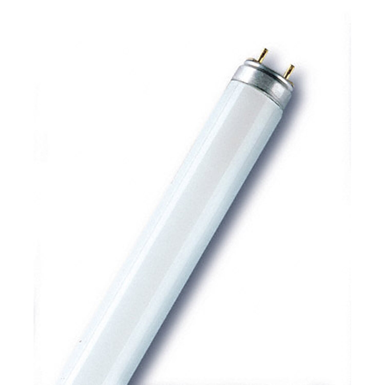 475225_1 Wunderbar 58 Watt Leuchtstofflampe Lumen Dekorationen