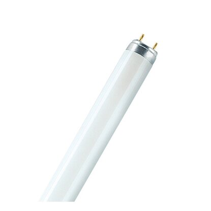Osram Leuchtstofflampe EEK: A Stabform T8 G13 / 58 W (4900 lm) Sky White