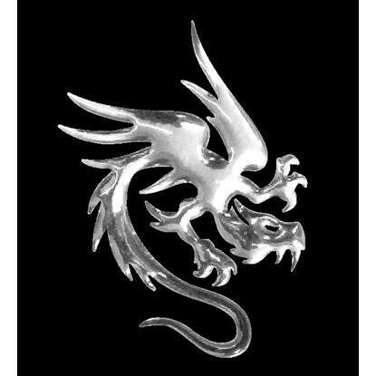 3-D Sticker Mini Drache 5 cm x 5 cm