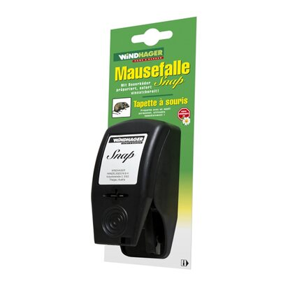Windhager Mausefalle Snap Schwarz