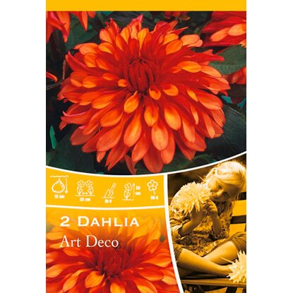"Dahlien ""Art Deco"" Orange"